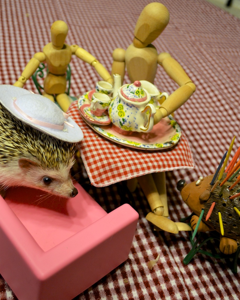 Hedgehog at tea party with toothpick holder.