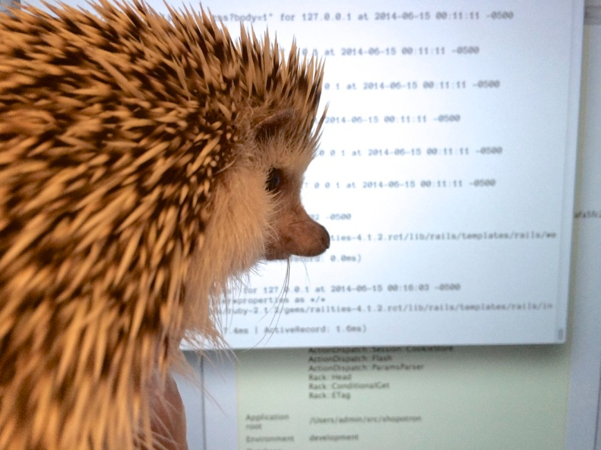 Princess Pricklepants, System Analyst