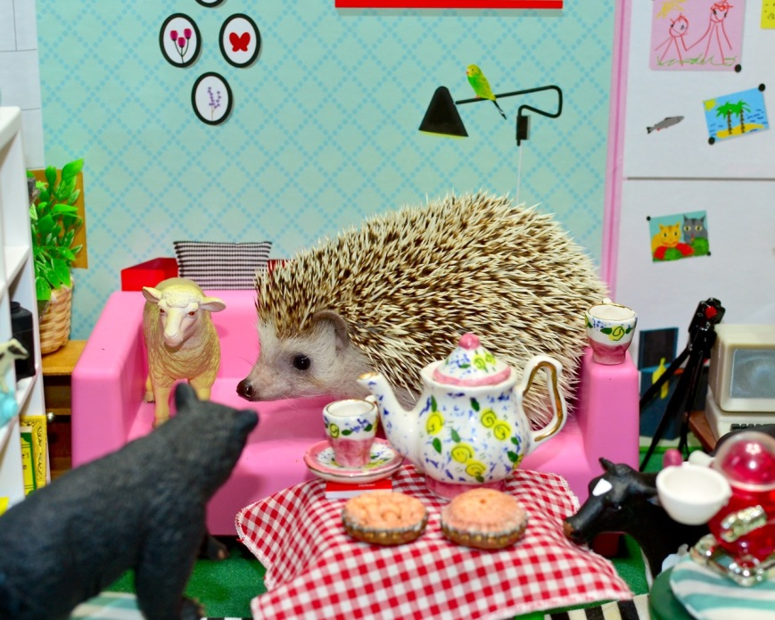 hedgehog at tea