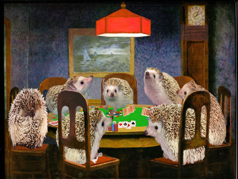 hogs_playing_poker