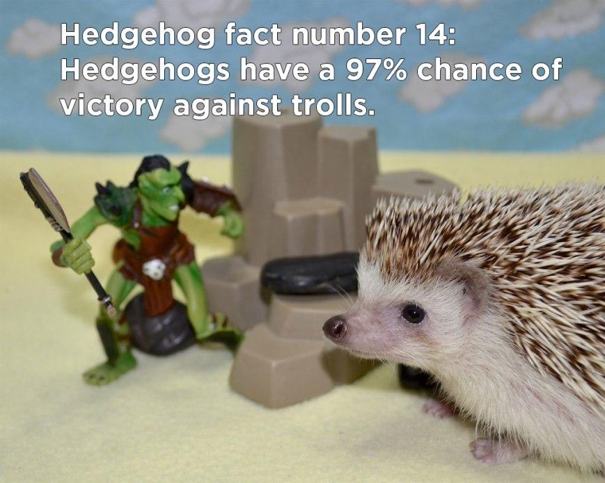 hh_fact7