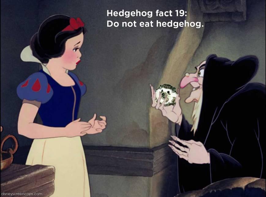 hh_fact26