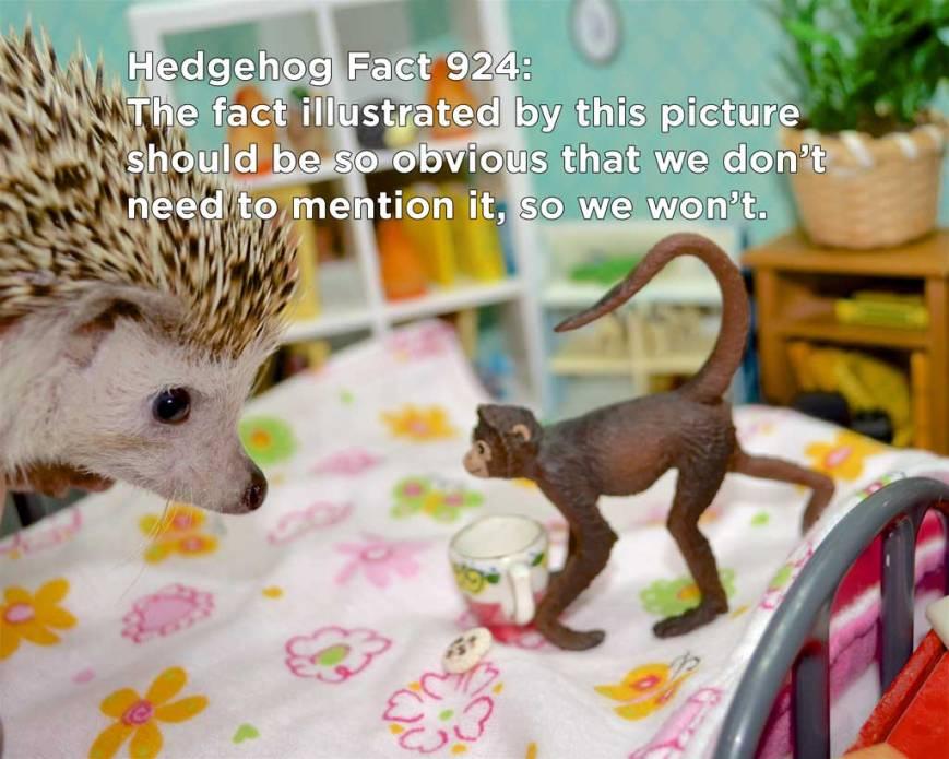 hh_fact49