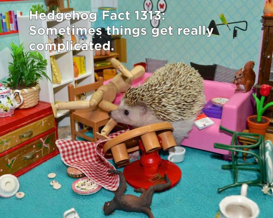 hh_fact53