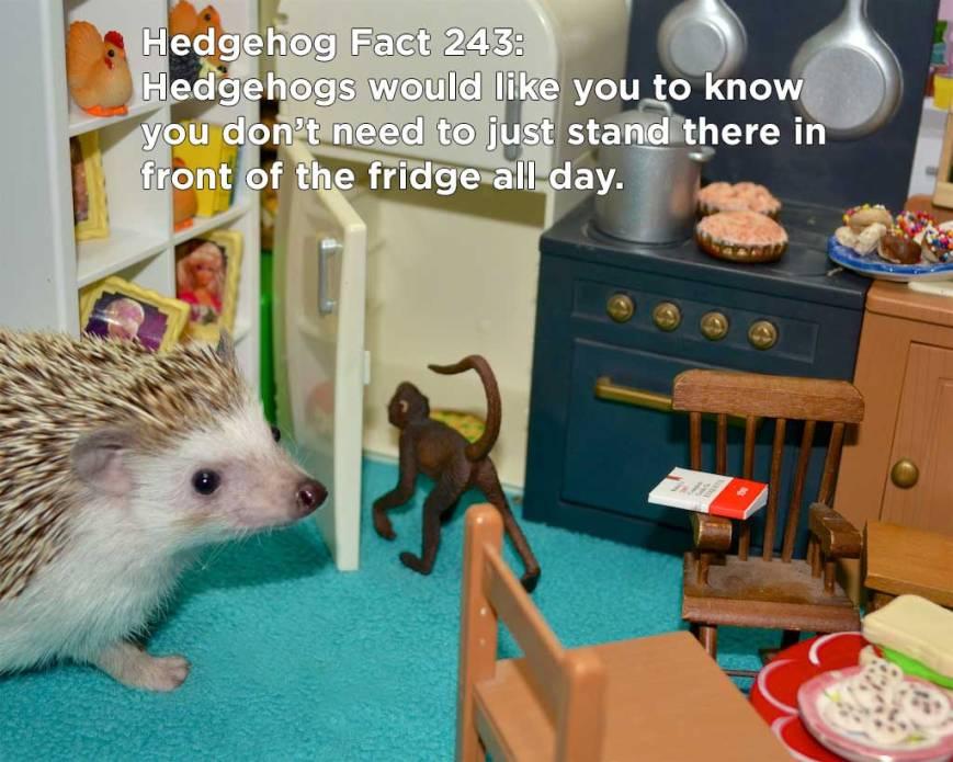 hh_fact60