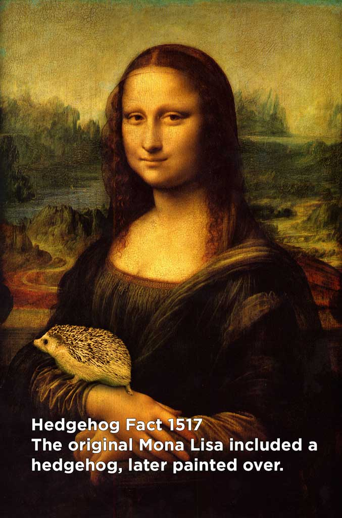 hh_fact61
