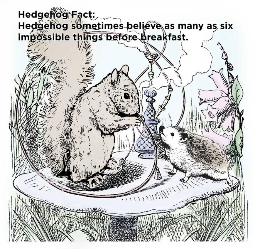 hh_fact64
