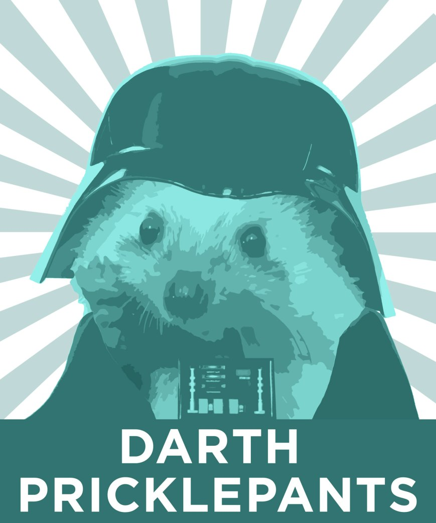 darth-pricklepants.jpg