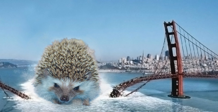 hedgezilla-golden-gate.jpg